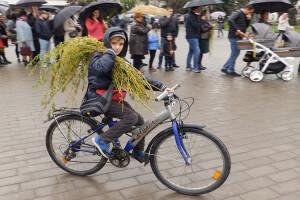 У Луцьку лунає святкове: «Не я б'ю — верба б'є!» (Фоторепортаж)
