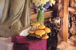 У церкві біля статуї святого... виросли гриби