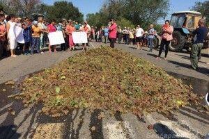 Фермери перекрили трасу Одеса-Рені й вивантажили на проїжджу частину цілу машину винограду (фото)