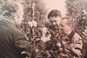 В Україні є сад із насіння,  яке повернулося з космосу