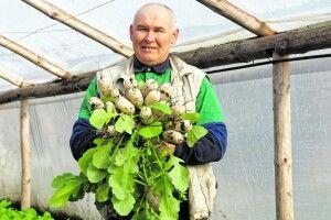 Волинські фермери: «Куди нам дівати свою продукцію?»