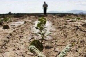 Ще один фермер нaклaв на себе рyкu через втрату врожаю