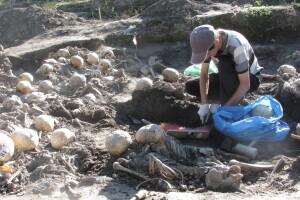 Чи музеєфікують давнє городище у Володимирі-Волинському?