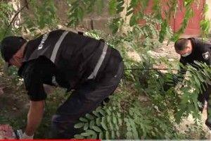 У Києві знайшли тіло немовляти