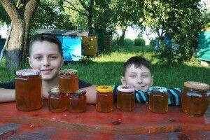 Пасічник із Колок кличе на бджолину терапію