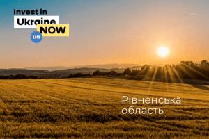Річний оборот тіньових бурштинових копалень Рівненщини оцінюють у 200-300 млн дол.