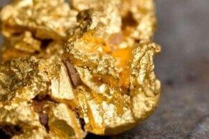 Вчені знайшли вид грибів, який виділяє золото