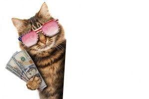 Приїздіть на Рівненщину – там посеред вулиці валяються гроші (Відео)