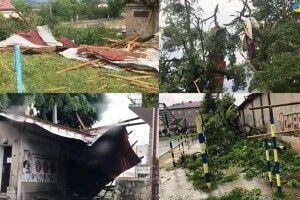 У сусідній з Волинню області ураган повиривав дерева і поперекидав авто (Відео)