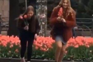 У Рівному спіймали «на гарячому» школярок, які крали з клумб тюльпани
