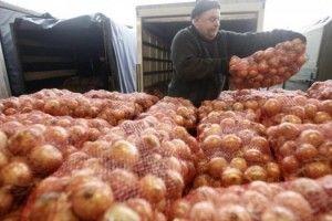 У січні-лютому українці встановили історичний рекорд із наминання імпортної цибулі