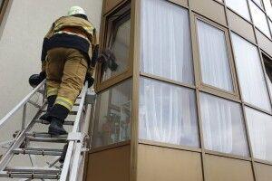 На Закарпатті довелося проводити рятувальну операцію з порятунку кота, який застряг у прочиненому «на провітрювання» вікні (фото)