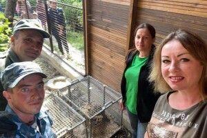 Луцький зоопарк поповнився новими мешканцями з родини котячих (фото)