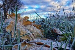 Погода на неділю, 24 жовтня: вночі Волинь трохи приморозить – протягом дня спека також не докучатиме