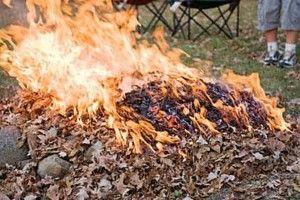 У Березному пенсіонер спалював сміття на присадибній ділянці – опинився в реанімації зі страхітливими опіками