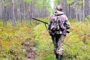 Кому на Волині роздали мисливські угіддя