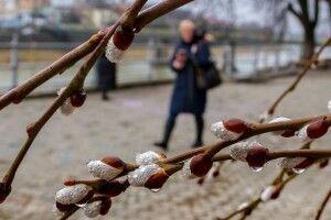 Яким буде перший місяць весни: прогноз погоди на березень