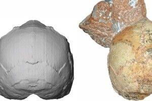 Вчені знайшли найдавніші рештки сучасних людей