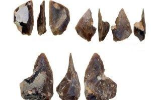 Археологи виявили в Польщі майстерню епохи неадертальців