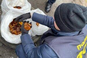На Рівненщині поліцейські викрили голову сільради: віз 30 кілограмів бурштину