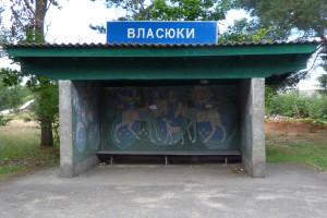 Журналістка «Волині» знайшла уЛюбомльському районі… неіснуюче село