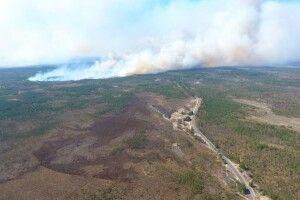 У трьох районах Рівненщини всім людом гасять пожежі у лісових масивах