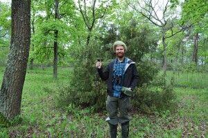 Скільки кажанів водиться на території Національного природного парку «Прип'ять – Стохід» (Фото)