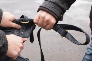 У Любешеві поліцейські оперативно викрили грабіжника