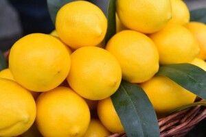 Чому в Україні подешевшали лимони