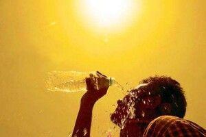 Рекордна літня спека у Франції призвела до майже 1500 смертей