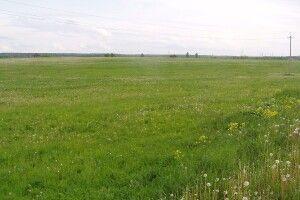 На Волині в підприємця забрали 10 гектарів землі