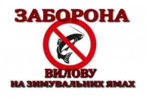 Вилов риби на зимувальних ямах у водоймах Волинської області заборонено!