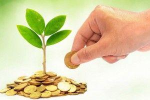 Волинські підприємці – спрощенці додали громадам понад 388 мільйонів гривень єдиного податку