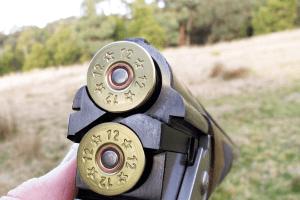 На Одещині мисливець підстрелив свого товариша