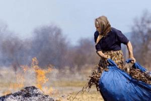 У Львові журналісти оголосили винагороду тим, хто зловить паліїв сухої трави