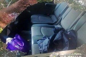 Знайшли злодія, який розбив скло в машині і вкрав у депутата Луцькради сумку з грішми (Фото)
