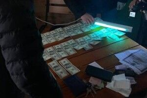 На Волині сільський голова та співробітник Держгеокадастру взяли «на лапу» 3700 «баксів» за надання в оренду 27 га землі