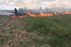 Іваничівський район: палили сміття – спалили 3 гектари поля