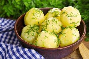 Без картоплі стіл порожній…