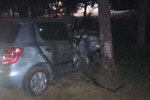 П'яна водійка в'їхала в дерево, загинула 19-річна пасажирка