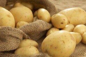 Поліщуки, майте на увазі: Україна імпортувала рекордну кількість картоплі