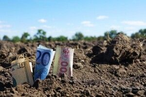 За скільки волиняни і рівняни продаватимуть свою землю