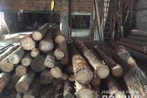 Поліцейські виявили у мешканця Костопільського району 30 кубів деревини без документів