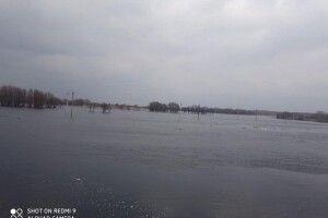 На Ратнівщині розлилася річка Прип'ять
