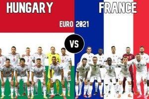 Кріль-прогнозист моментально визначив переможця у матчі Угорщина - Франція (Відео, анонс)