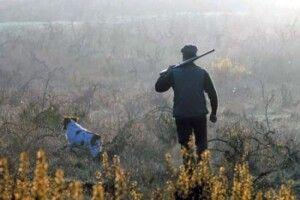 Після відкриття сезону полювання на копитних та хутряних звірів у Волинській області складено 19 протоколів