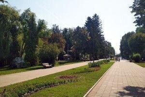 У Луцьку на круглому столі говоритимуть про торгівлю в Центральному парку культури і відпочинку імені Лесі Українки