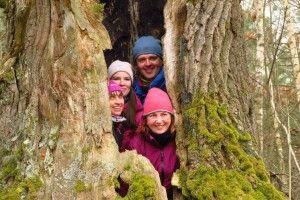У Цуманській пущі турист і три туристки залізли всередину дуба (фото)
