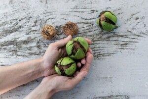 Як відмити руки від ягід і молодих горіхів. Корисні поради