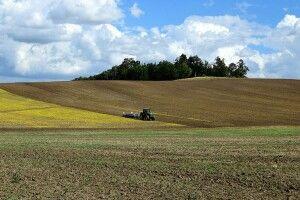 Громада на Волині отримала землю вартістю близько 3-х мільйонів гривень